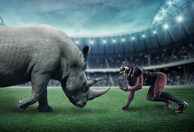 americký fotbal a nosorožec