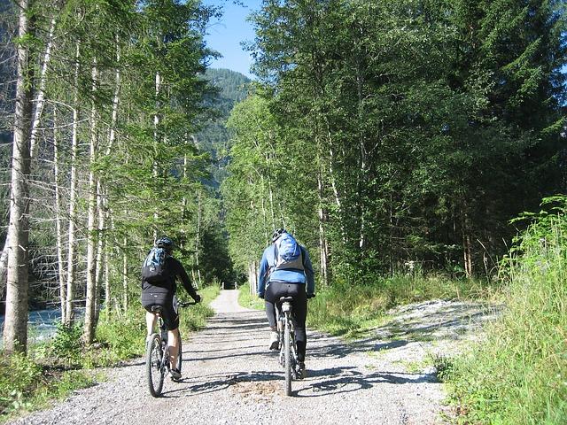 cyklisti na cestě