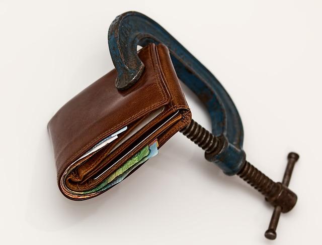 hnědá peněženka.jpg