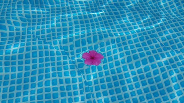 květ v bazénu.jpg